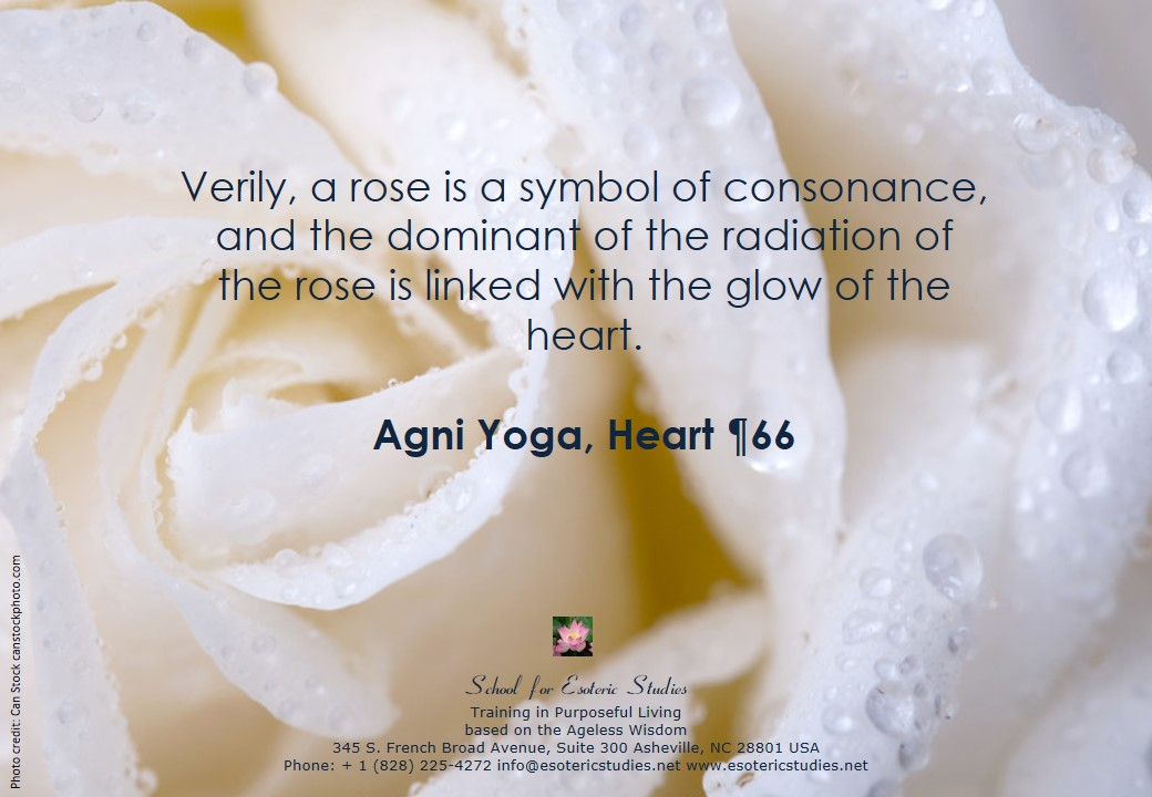 Quote about the Rose as a symbol for the Heart
