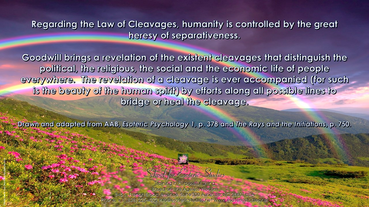 Quote about the Law of Cleavages