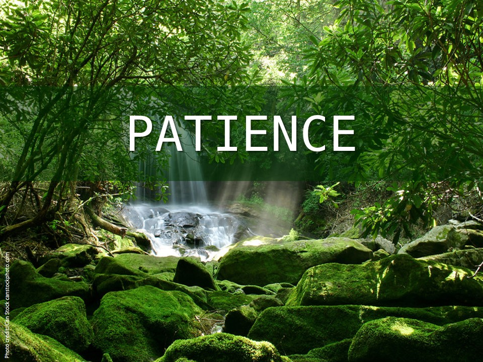 Image evoking patience